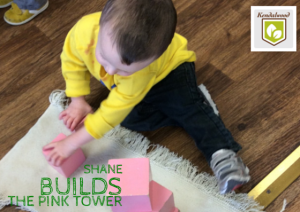 shane builds the pink tower